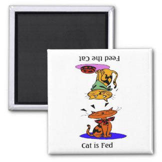 Alimente el gato imán cuadrado