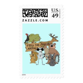 Alimente los animales sellos