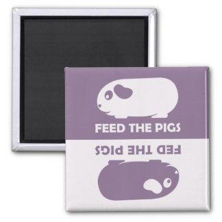 Alimente los cerdos - imán del refrigerador del co