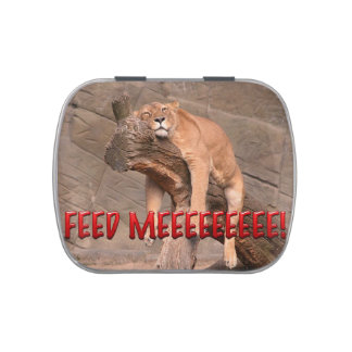 Aliménteme el león jarrones de dulces