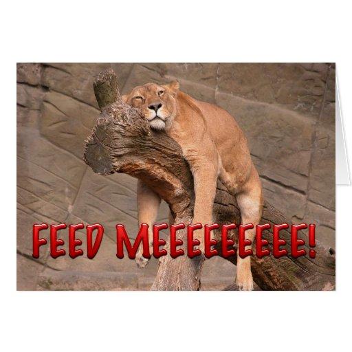 Aliménteme el león tarjeta de felicitación