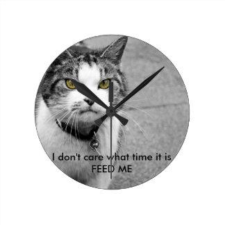 aliménteme el reloj del gato