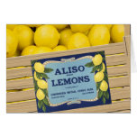Aliso Lemons Card