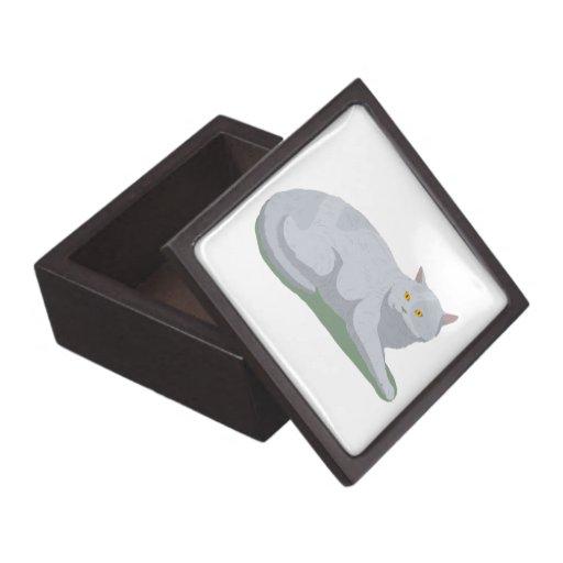 Aliste para dejar el gato cajas de joyas de calidad