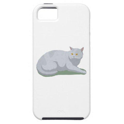 Aliste para dejar el gato iPhone 5 cárcasa