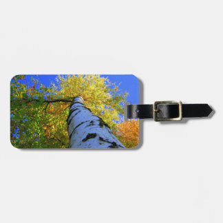 Alive Luggage Tags