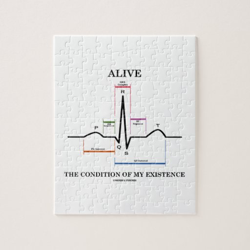 Alive The Condition Of My Existence (ECG/EKG) Puzzle