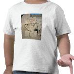 Alivio de dios egipcio del hogar, Bes Camisetas