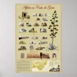 Aljibes de Cabo de Gata Posters