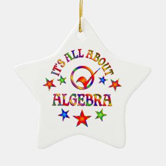 All About Algebra Ceramic Ornament