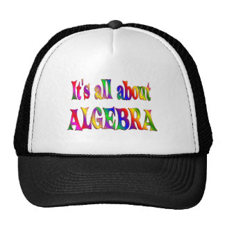 All About Algebra Mesh Hat