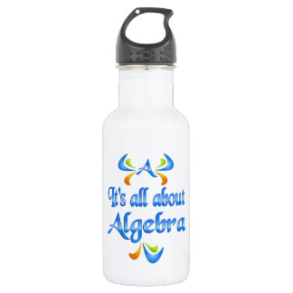 All About ALGEBRA Stainless Steel Water Bottle