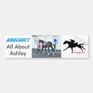 All About Ashley Bumper Sticker