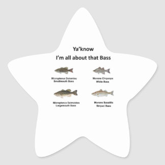 All about that Bass Star Sticker