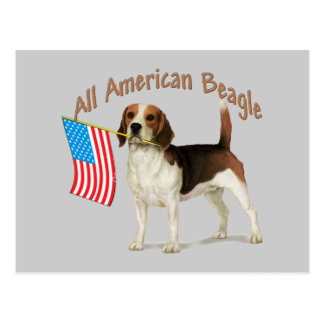 All American Beagle gifts Postcards