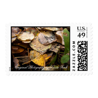 ALL Autumn Leaf Litter Postage