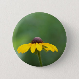 all clear pinback button