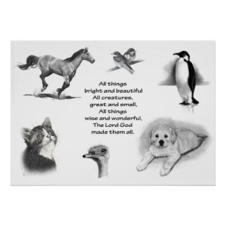 ALL CREATURES GREAT & SMALL: PENCIL DRAWINGS POSTER