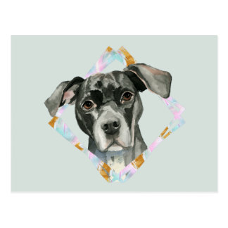 """""""All Ears"""" Pit Bull Dog Watercolor Painting Postcard"""