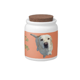 All food must go to the Lab Candy Jar. Yellow Lab Candy Jar
