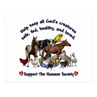 All Gods Creatures Humane Society Postcard
