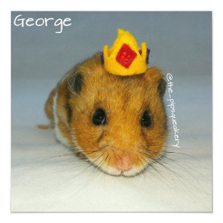 All Hail King George 5.25x5.25 Square Paper Invitation Card
