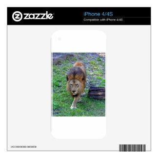 All Hail the King of the Jungle Decals For The iPhone 4S