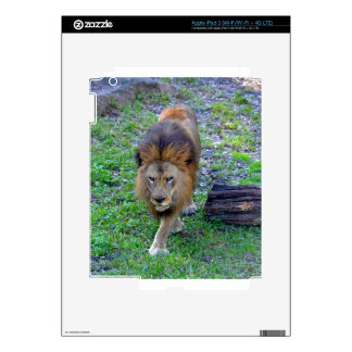 All Hail the King of the Jungle Skin For iPad 3