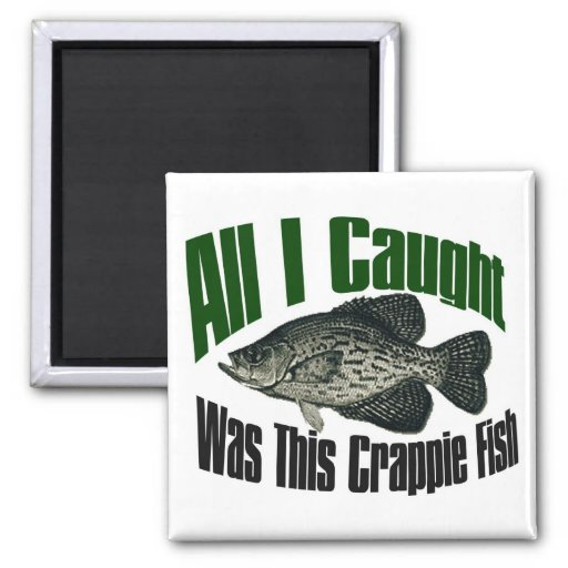 All I caught was this crappie fish magnet
