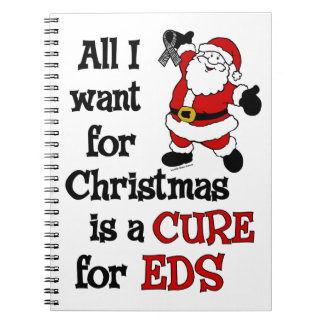 All I Want For Christmas...EDS Notebook