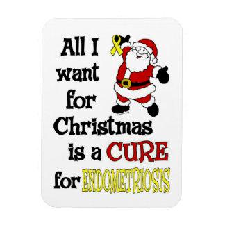 All I Want For Christmas...Endometriosis Magnet