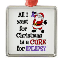 All I Want For Christmas...Epilepsy Metal Ornament