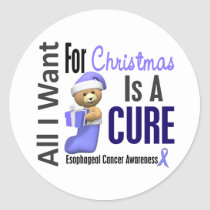 All I Want For Christmas Esophageal Cancer Classic Round Sticker