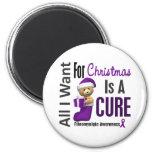 All I Want For Christmas Fibromyalgia Fridge Magnets
