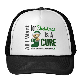 All I Want For Christmas Liver Cancer Mesh Hat