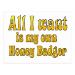 All I Want Is My Own Honey Badger Post Cards