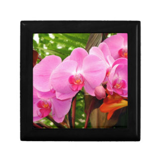 All in A Row Gorgeous Magenta Orchids Giftbox Jewelry Box