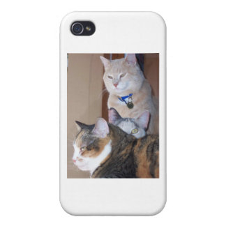 All in the family iPhone 4 case