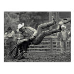 All Indian Rodeo in Tygh Valley, Oregon. Clint Postcard