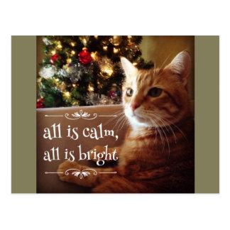 All Is Calm & Bright Cute Cat Christmas Postcard