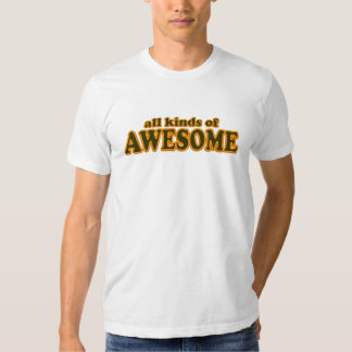 All Kinds of Awesome T-Shirt