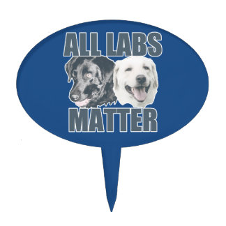 All labs matter cake topper
