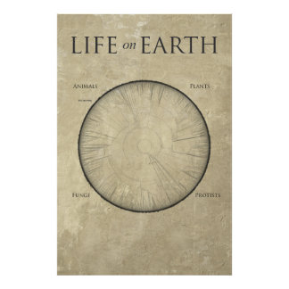 All Life on Earth, mapped out on one giant poster