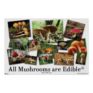 All Mushrooms Are Edible* Poster