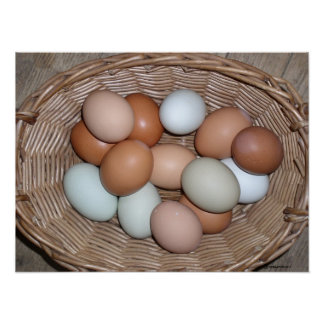 ALL NATURAL COLORED EGGS PRINT