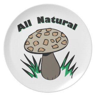 All Natural Dinner Plates