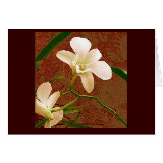All Occasion Note Card ~ Orchids ~ Floral Art
