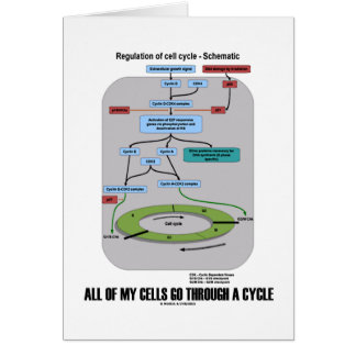 All Of My Cells Go Through A Cycle (Biology) Greeting Card