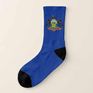 All Over Print Socks with Flag of Pennsylvania