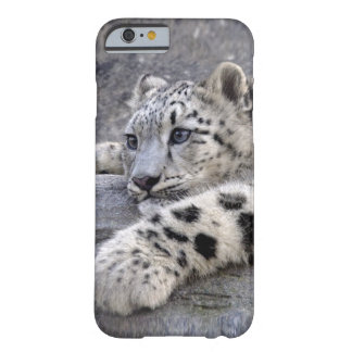 All Played Out iPhone 6 Case